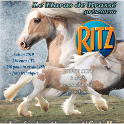 CILLBARRA RITZ